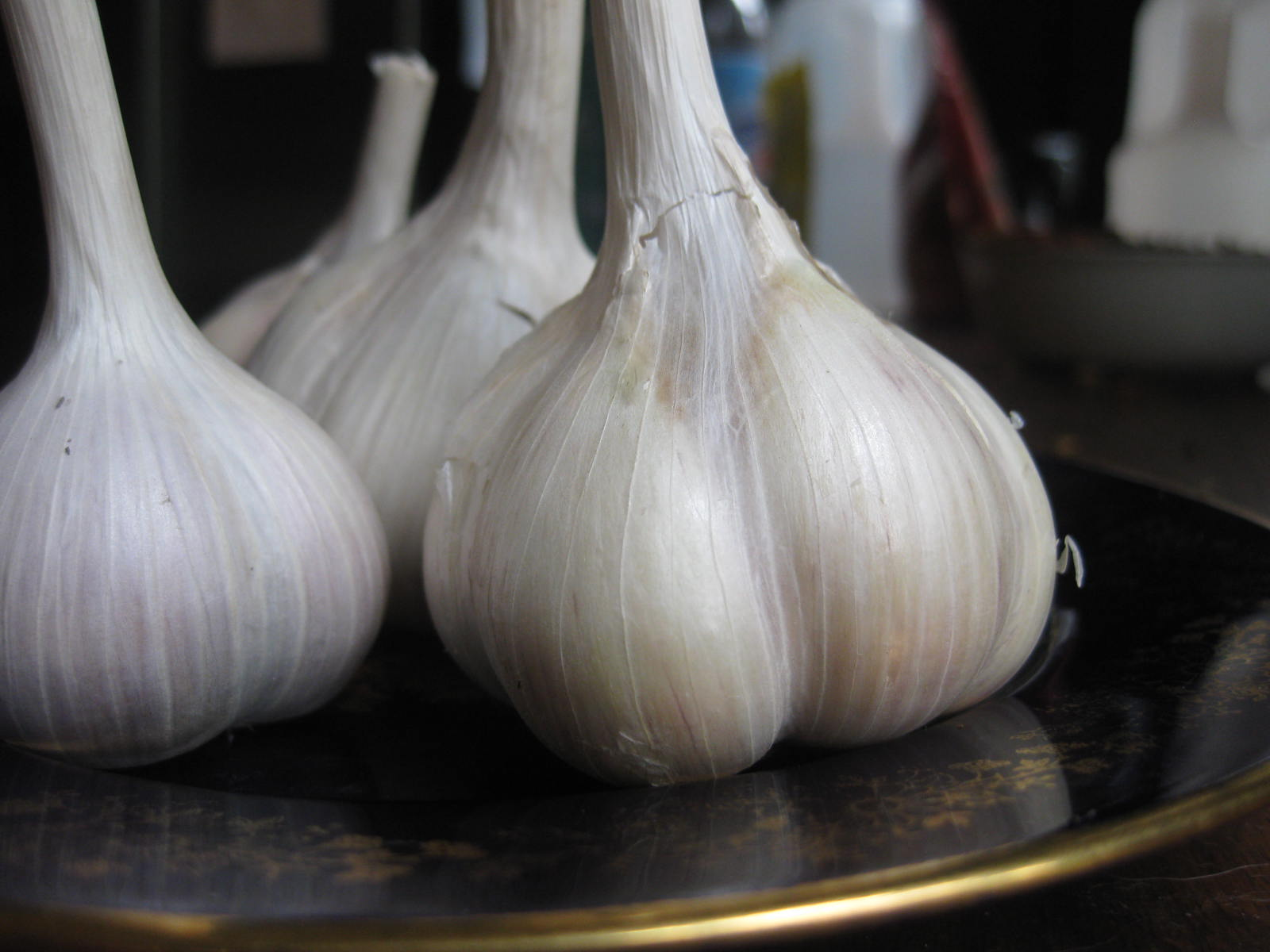 My Garlic Sowing And Growing Guide