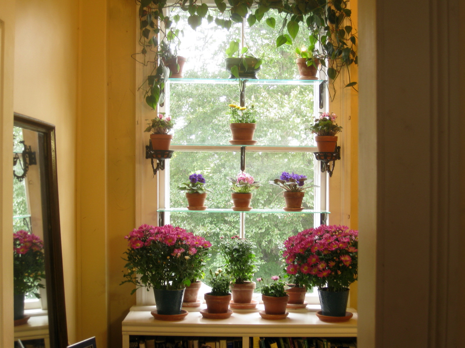 The Window Garden in Autumn