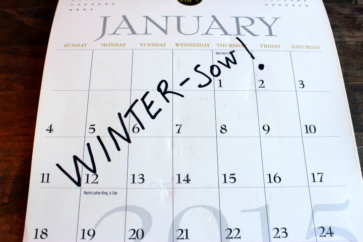 What to Winter-Sow…And When (Updated for 2015)