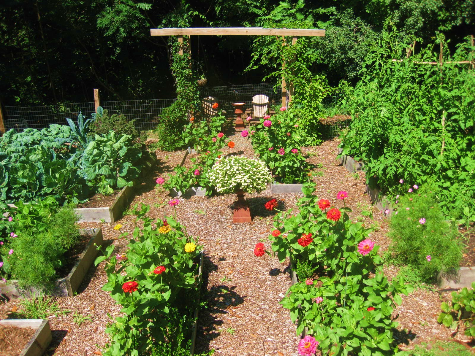 Creating A Raised Bed Garden: flowers to plant in vegetable garden