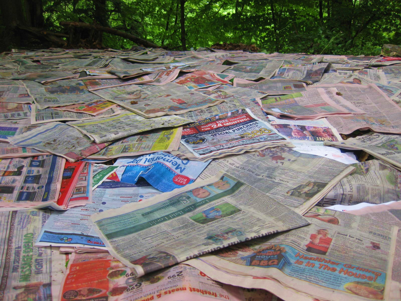 paper mulch Recycle home paper as mulch august 23, 2018 uk custom essays writers what can be done with the mounds of newspapers, magazines and mailers that arrive weekly.