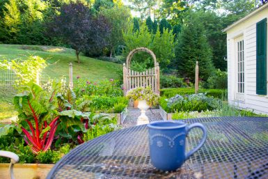 Coffee in the Herb Garden, and A Question for You