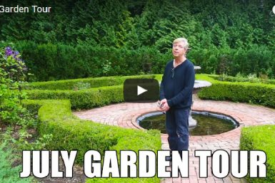 Video: July 2017 Garden Tour!
