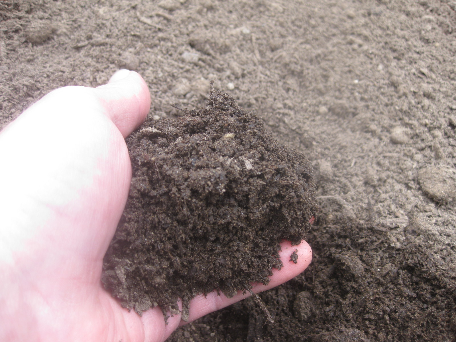 How To Make Your Own Potting Soil