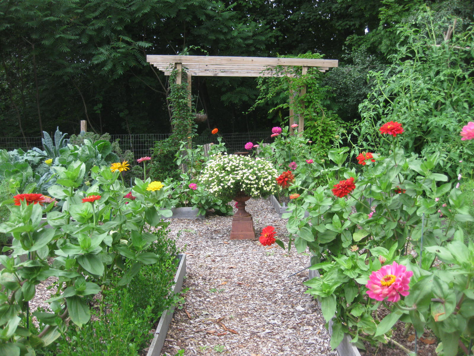 PHOTO GALLERY: A Walk in the Kitchen Garden