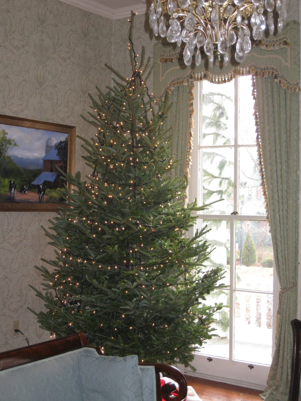 Tips for Treating, Lighting, and Decorating a Christmas Tree