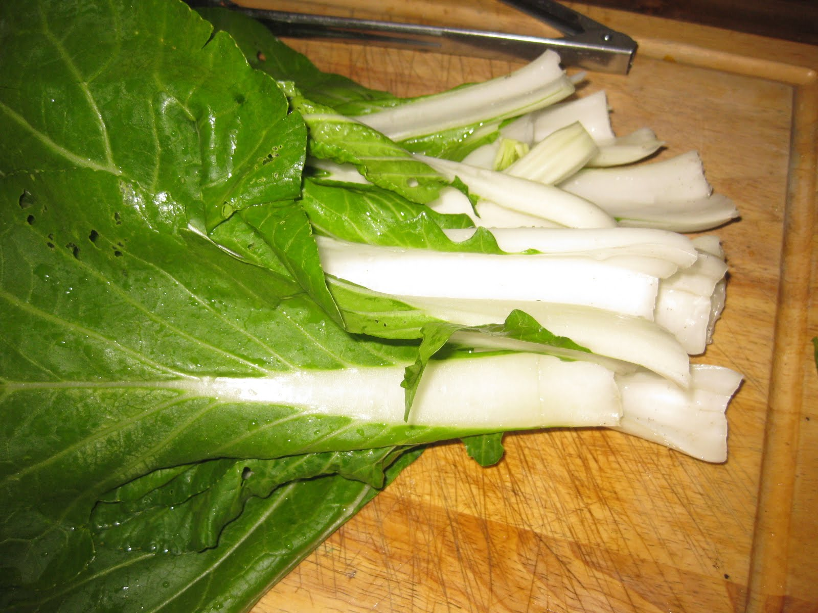 Bok Choy with Garlic, Ginger & Soba Noodles