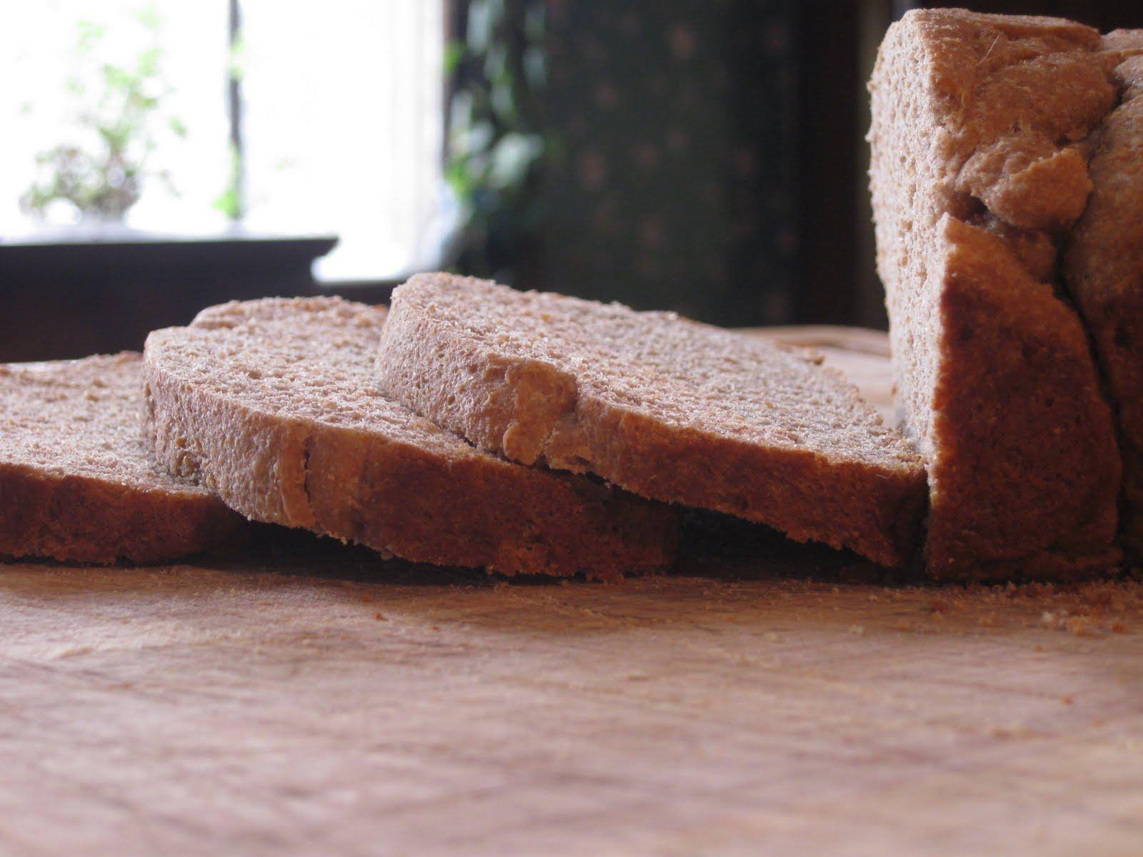 No-Work, No-Knead, Whole Wheat Bread