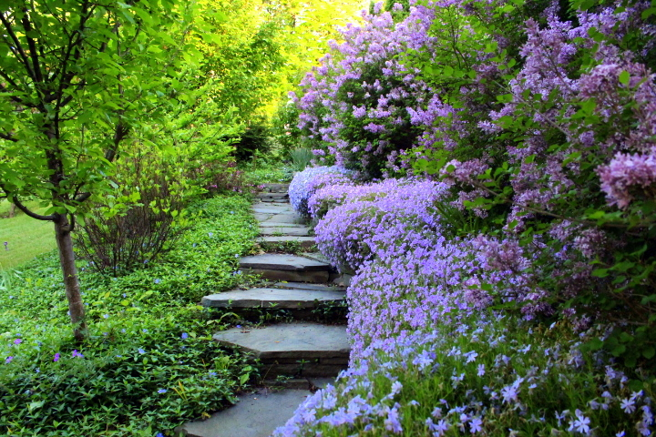 From Hellish Hill to Serpentine Garden