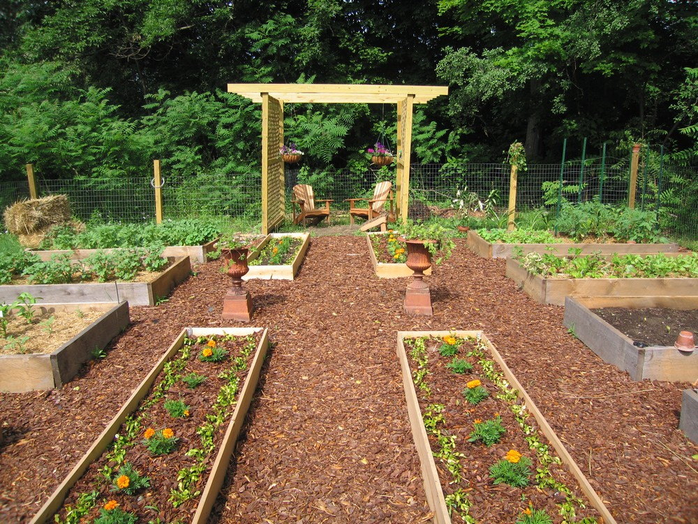 What Makes A Good Raised Garden Bed