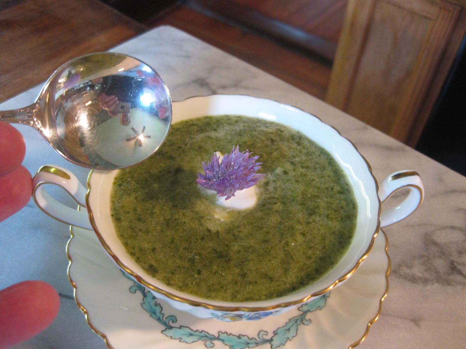 Recipe: Lettuce & Lovage Soup