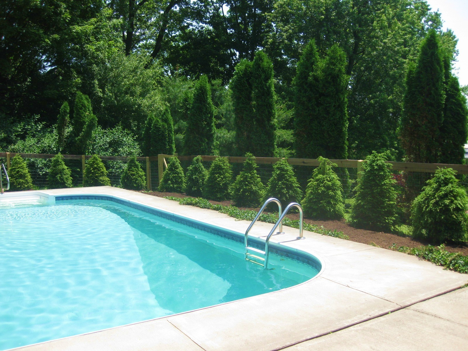 Pool Makeover
