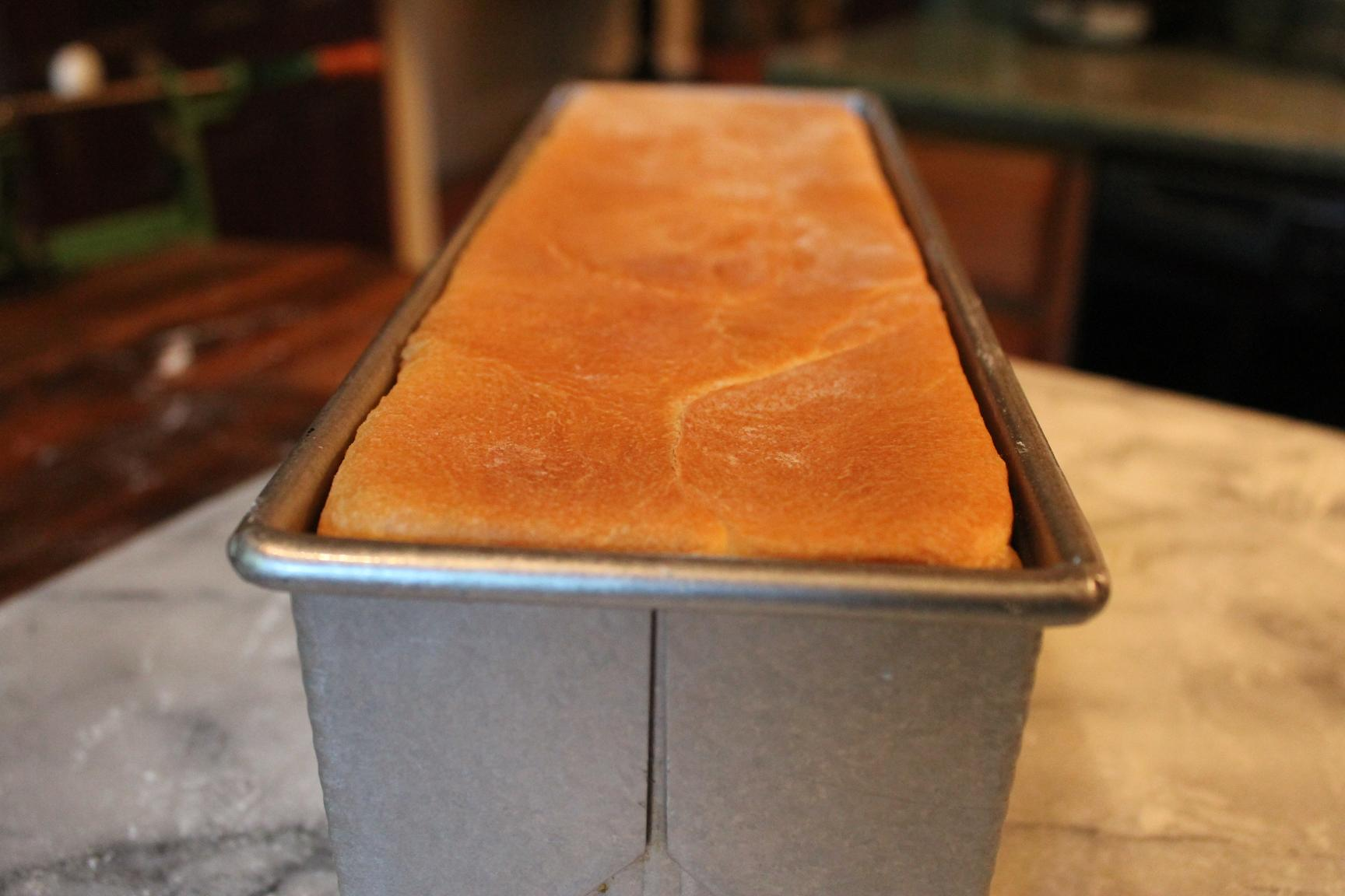 Pain De Mie In A Pullman Pan