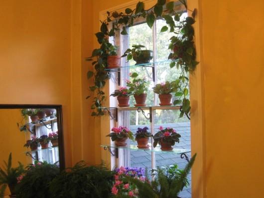 Wood Window Shelves