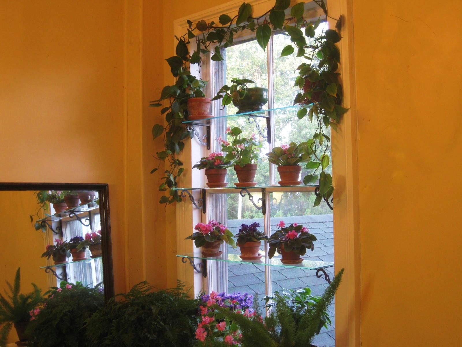 Kitchen Window Shelf Decor