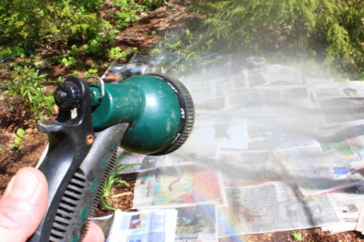 spray the newspaper with water