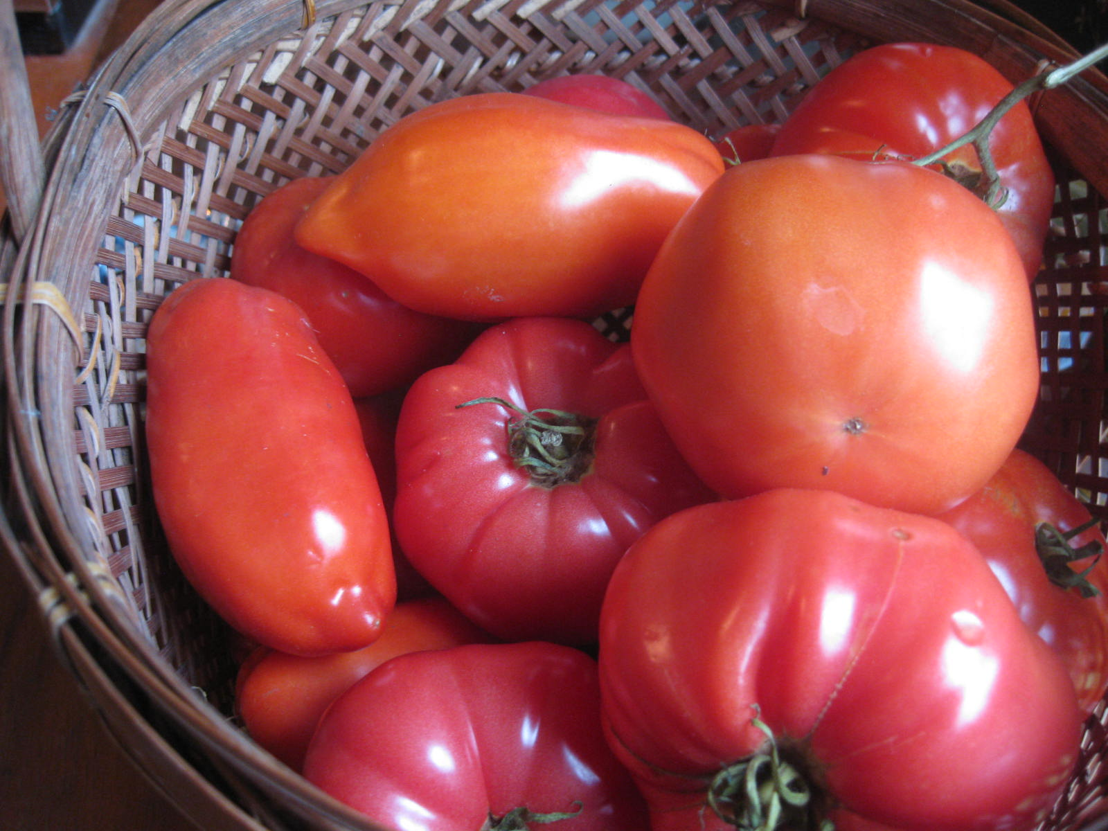 Tomato Talk: Your Favorite Varieties…And Mine