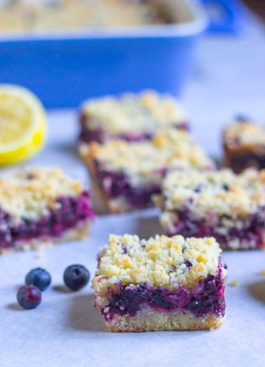blueberry bars cover vertical 1 6-30-16 jpg