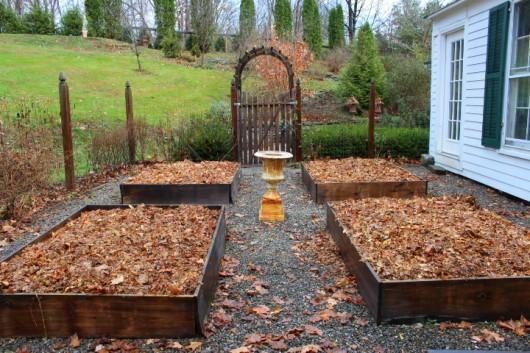 November 2019 House and Garden Chores