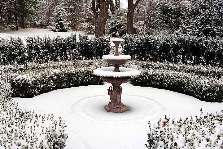 My Gardens in Snow