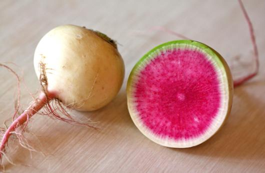 watermelon radish JPG