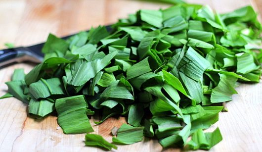 ramps chop the green leaves