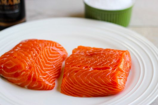 salmon on plate 6-01-16 jpg