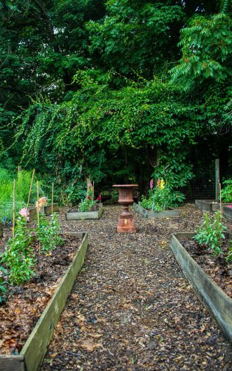 kitchen garden gate view picassa 7-08-16 jpg