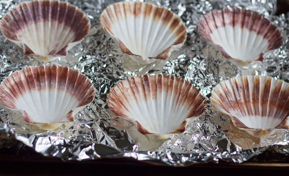 coquille-st-jacques-shells-on-crumpled-foil-9-19-16