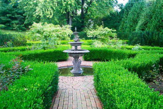 garden-tour-1-boxwood-garden-9-27-16