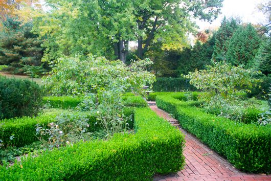 garden-tour-crabapple-trees-in-boxwood-garden-10-17-16