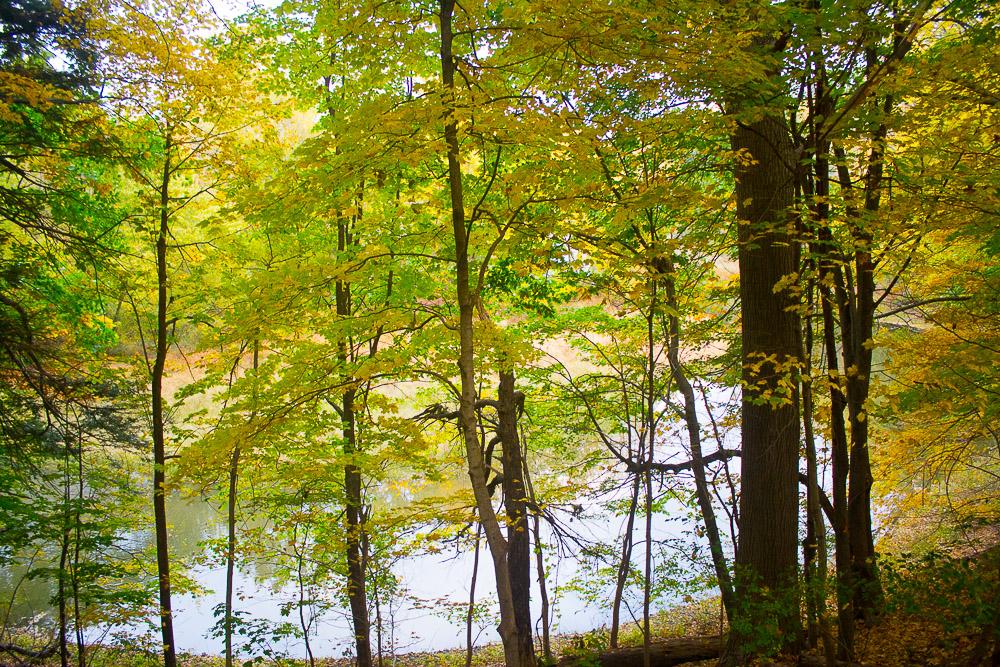 garden-tour-hudson-river-tributary-10-17-16