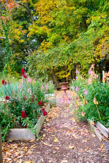 garden-tour-kitchen-garden-front-10-17-16