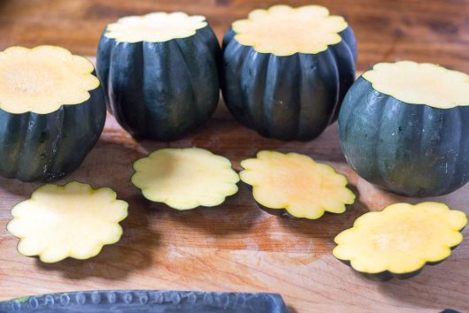 gobble-squash-slice-off-tops-or-lids-10-03-16