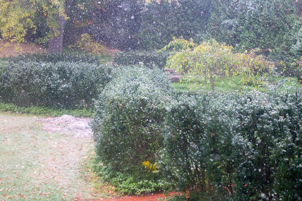 snow-10-27-16