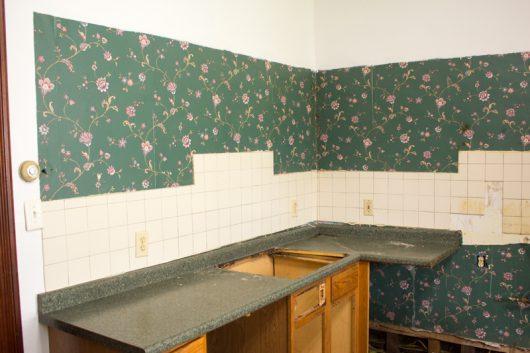 Kitchen Renovation Diary – Day #1