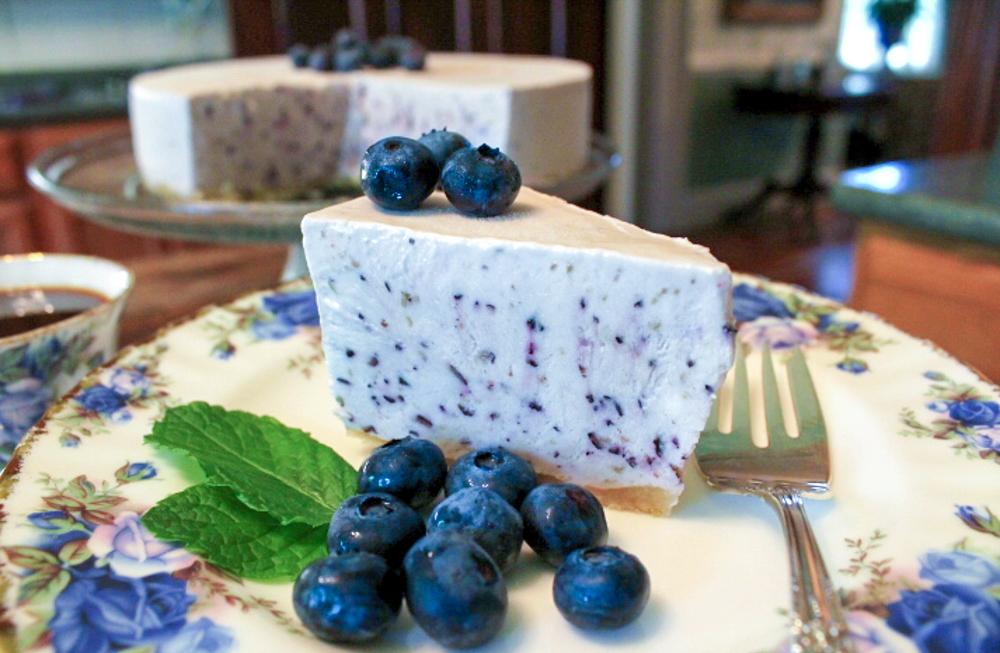 Frozen Yogurt Blueberry Pie (No-Bake!)