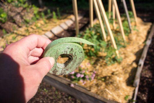 green velcro tape