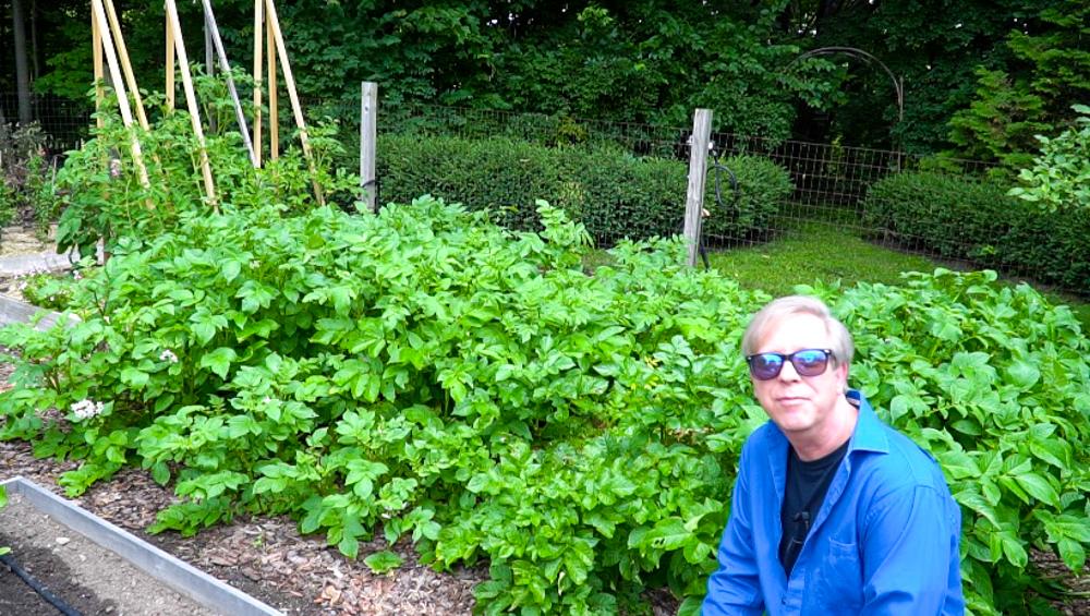 A Virtual Garden Tour