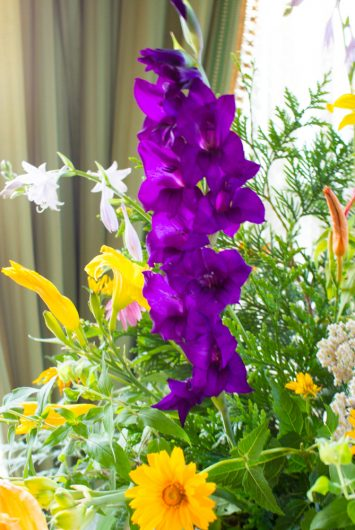 purple gladiola for July Flower Arrangement