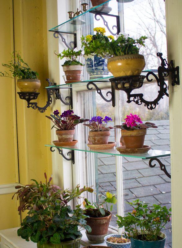December Window Garden 2019