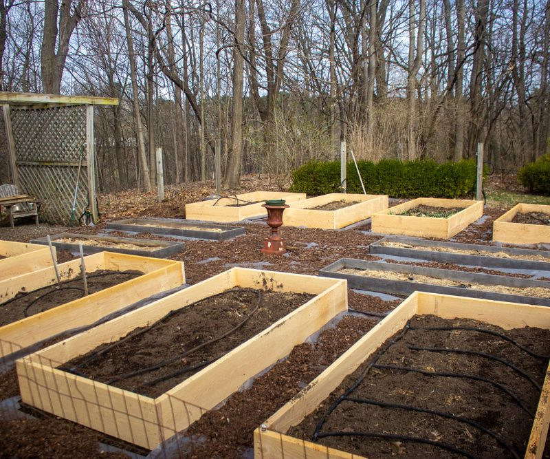 Kitchen Garden Makeover: New Raised Beds