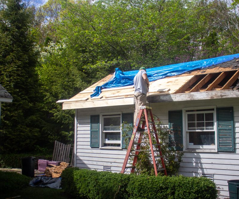 Home Improvement Project: The Garden Shed